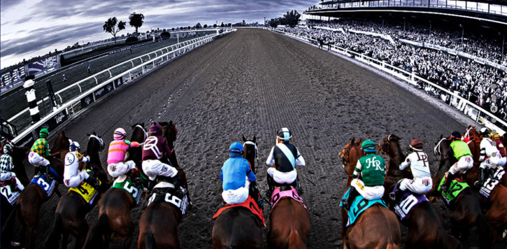 Horse betting sites online how much is 1 point in betting what is a money